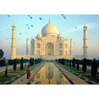 PUZZLE-TAJ MAHAL INDIA 1000 PCS (GLOWS IN DARK)