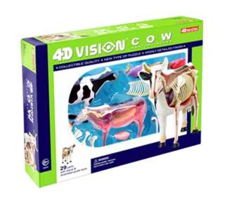 COW ANATOMY MODEL 29PARTS W/STAND & BOOK