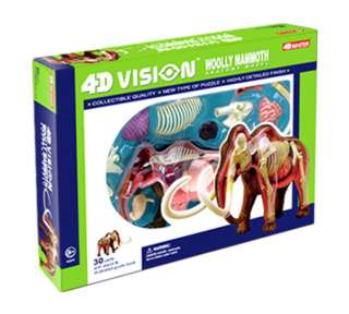 WOOLLY MAMMOTH ANATOMY MODEL 4D-VISION