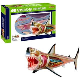 GREAT WHITE SHARK ANATOMY MODEL 4D-VISION 20PARTS W/STAND & BOOK