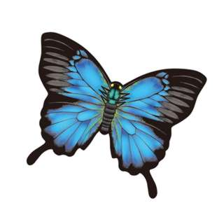KITE MINI MYLAR BUTTERFLY 4.7IN HANDLE & LINE INCLUDED