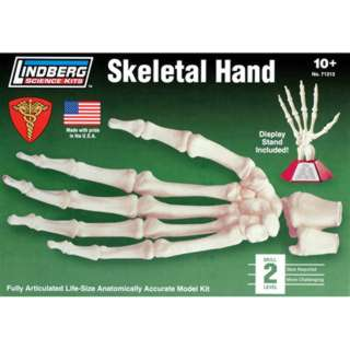 HUMAN SKELETAL HAND MODEL KIT LINDBERG UNASSEMBLED LIFE SIZE